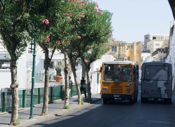 Amalfi Coast, Buses At Capri