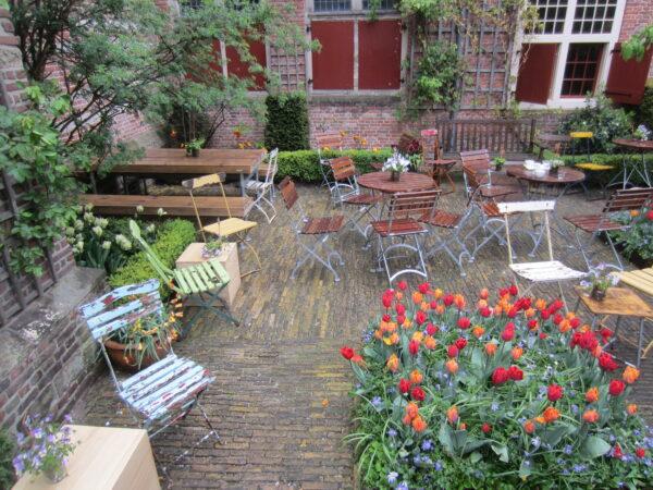 Amsterdam, Tulips In Courtyard