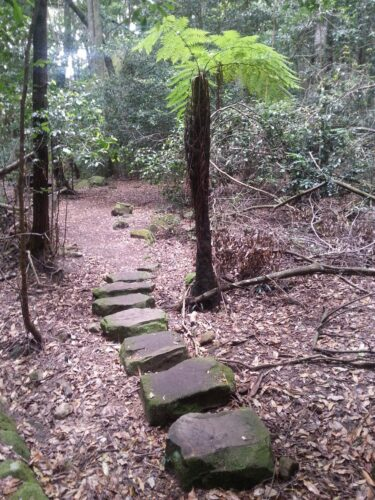 Australia - Blue Mountains, Stone Path