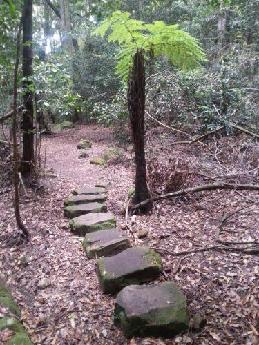 Australia - Blue Mountains, Stone Path