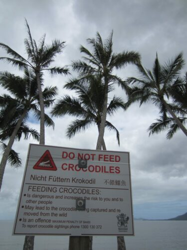 Cairns, Do Not Feed Crocodiles