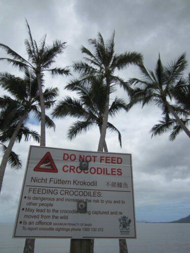 Cairns, Do Not Feed Crocodiles