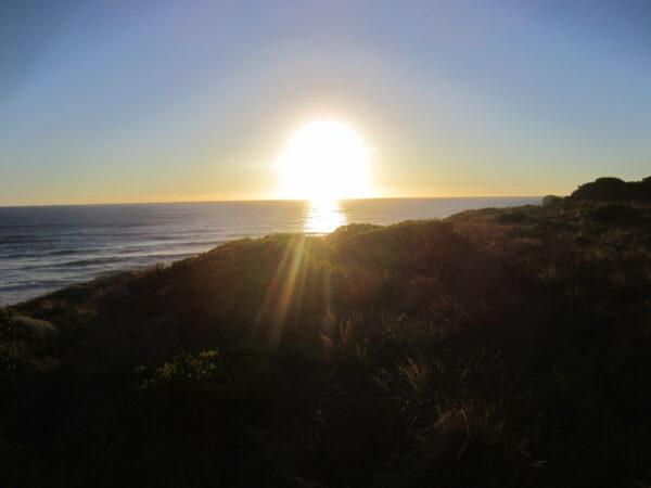 Australia - Great Ocean Road, Grassland Sunset