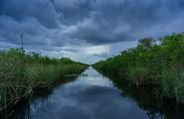 Cloudy View At Everglades National Park