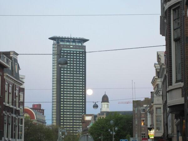 Den Haag, Moonlight