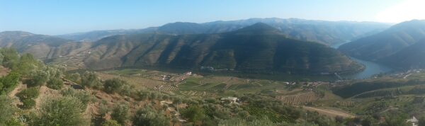 Douro Valley - Panorama View