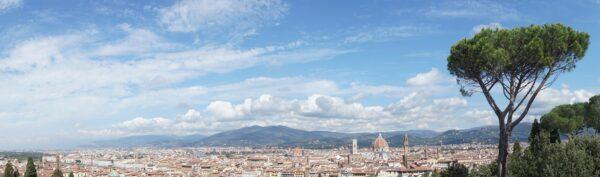 Florence Panorama View