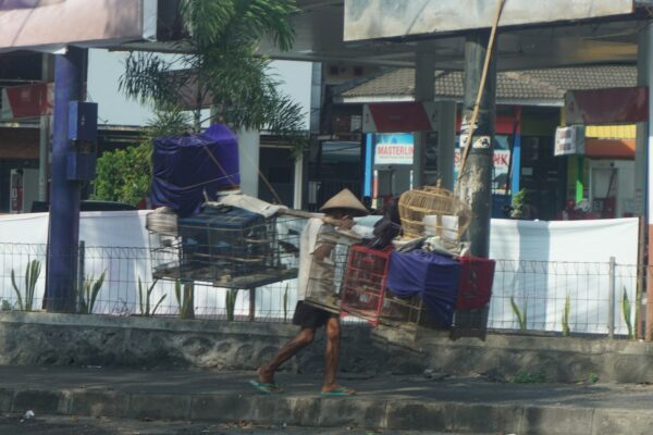 Indonesia, Man Carrying Cages