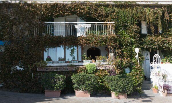 Ischia - Sant Angelo, House