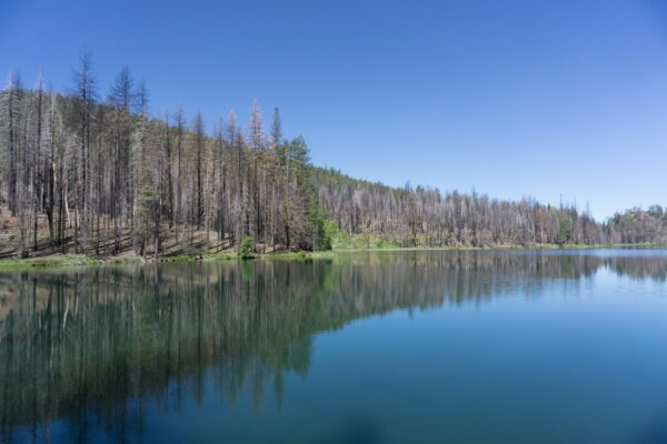 Lake At Mendocino National Forest