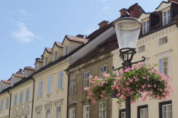 Ljubljana, Flowers And Street Lamp