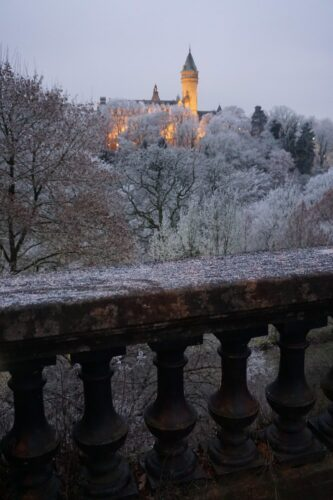 Luxembourg, Snow Covered Trees