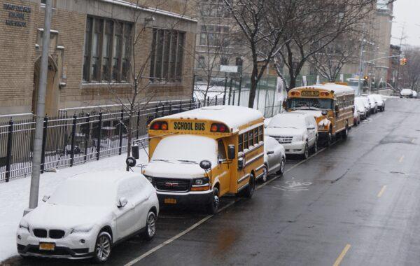 New York - Brooklyn, School Bus