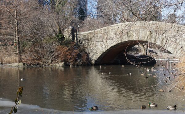 New York, Gapstow Bridge In Central Park
