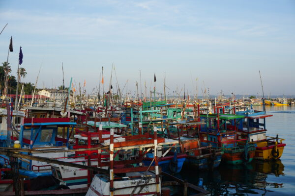 Sri Lanka, Fisherboats At Mirissa Port