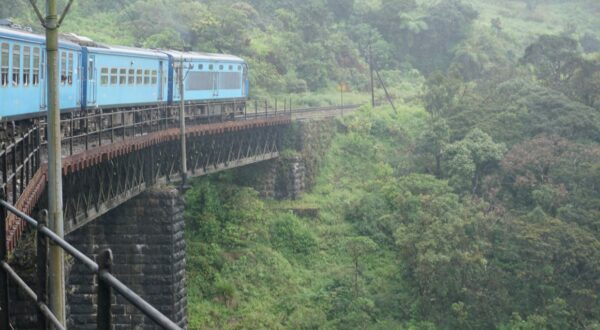 Sri Lanka, Train On Bridge