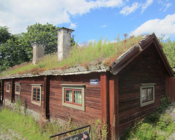 Stockholm - Skansen, Grass Covered Roof
