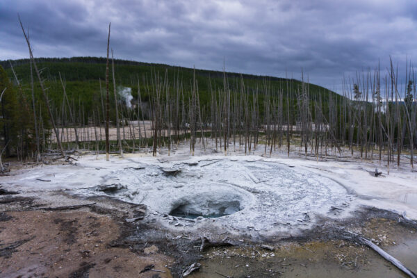 Yellowstone National Park, Norris Geyser Basin