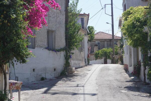 Road At Volimes